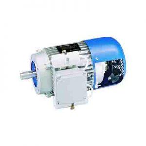 Motoare asincrone monofazice cu comutator centrifugal Carpanelli MADC